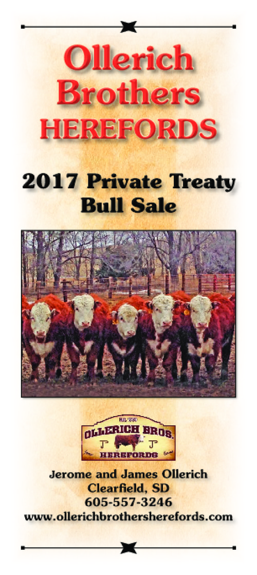 2017 Private Treaty Bull Sale